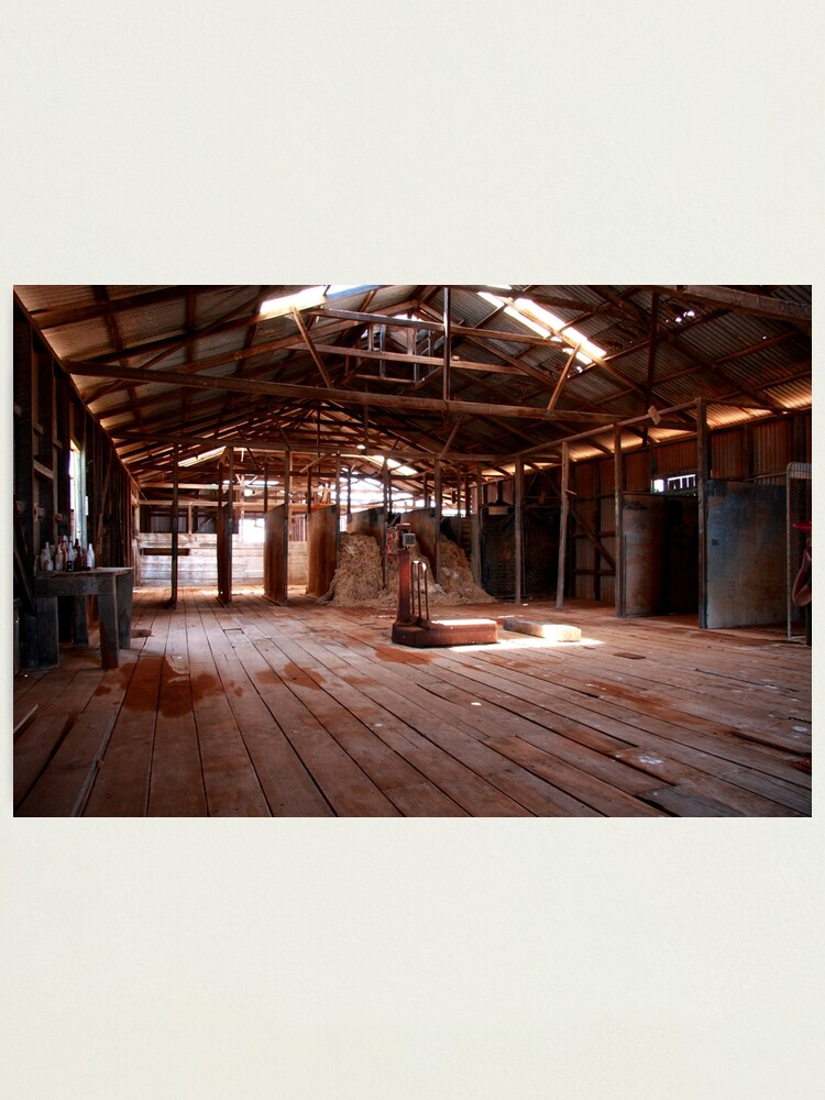 Alternate view of Old shearing shed Photographic Print