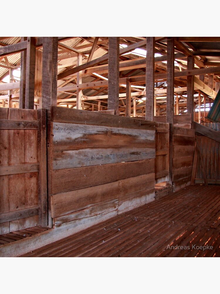 Shearing shed - holding pen by mistered