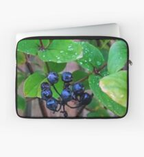 Black Berries........ Laptop Sleeve
