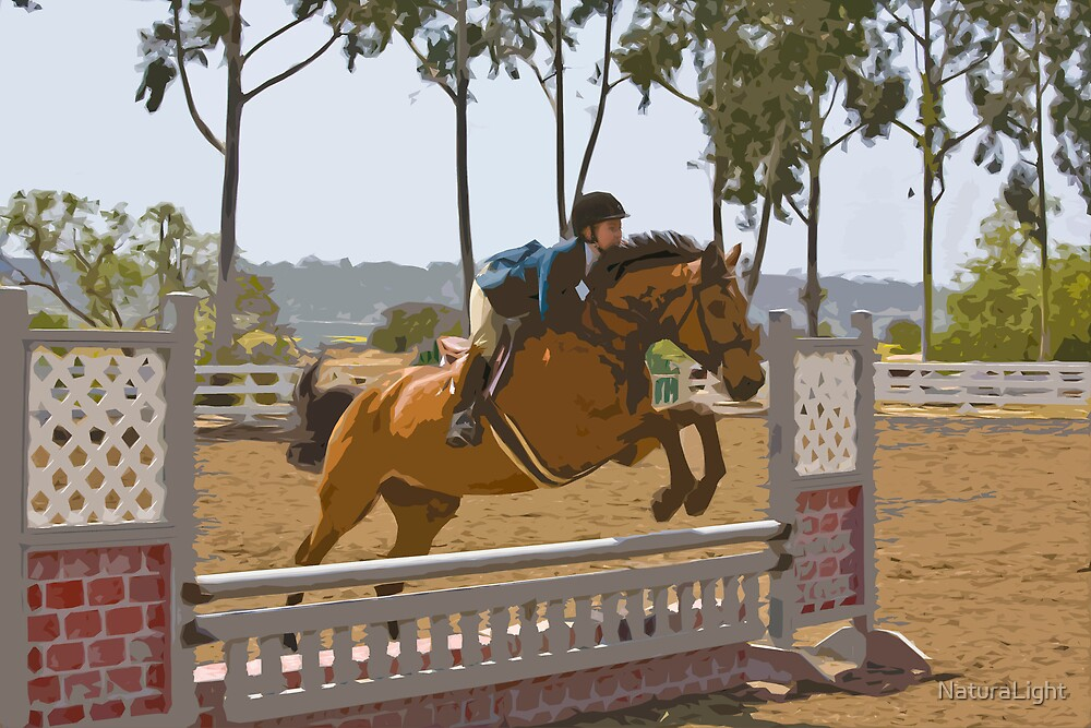 Stylized photo of an equestrian woman jumping her horse over a hurdle. by NaturaLight