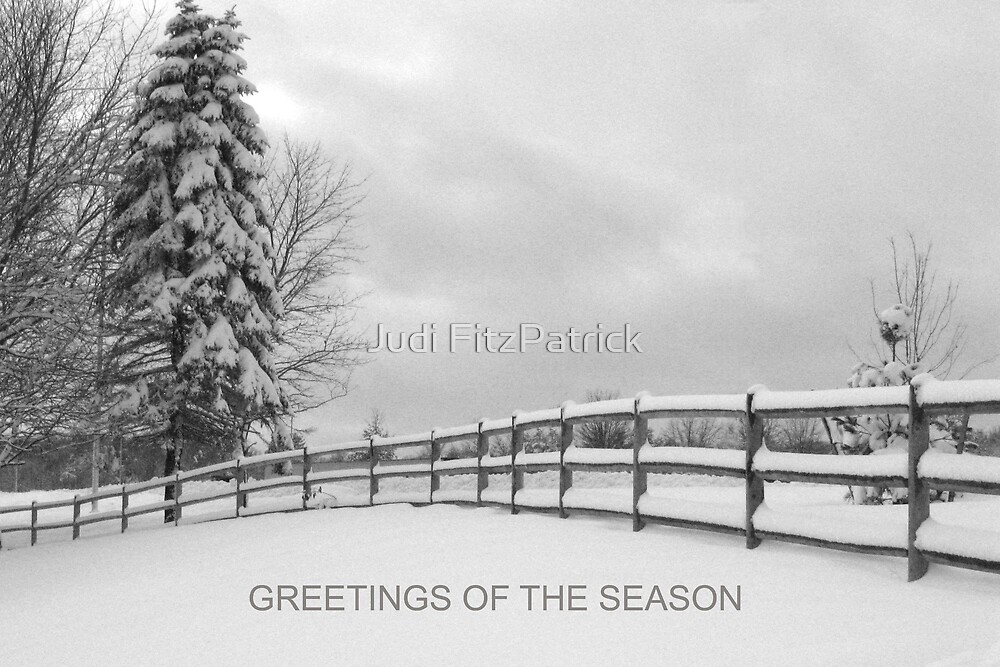 Winter Fence 2 with text by Judi FitzPatrick