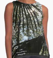 Clear to the Sun Contrast Tank