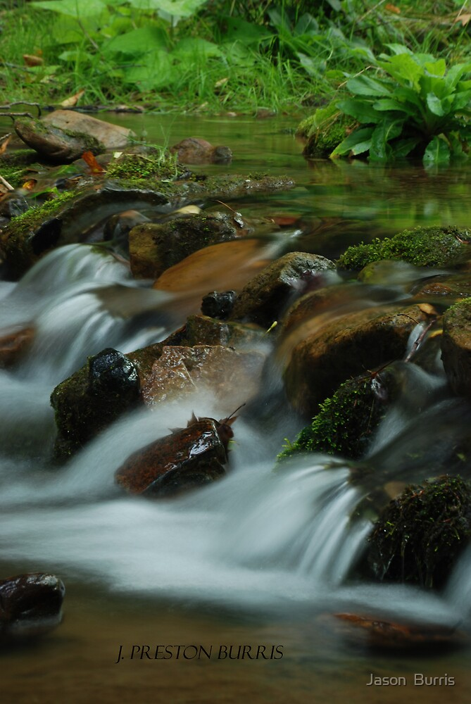 Just a Creek by Jason  Burris