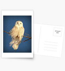 Guardian Angel Postcards