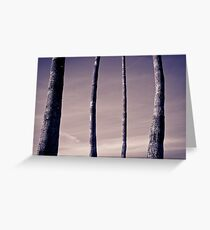 Four Palm Trunks Greeting Card