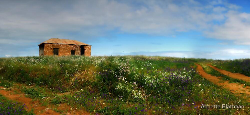 House on a Hill by Annette Blattman