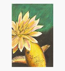 Koi and the Lotus Flower Photographic Print