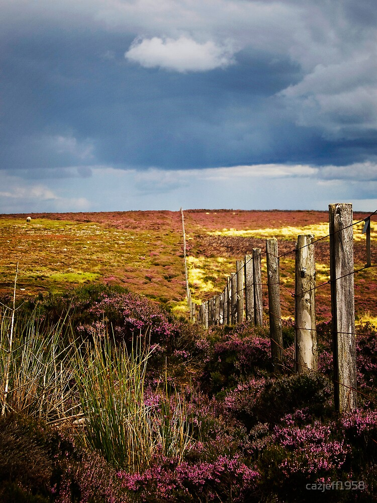 Moorland Fence by cazjeff1958