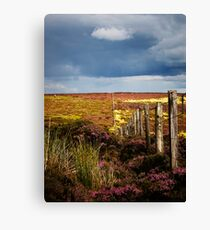Moorland Fence Canvas Print