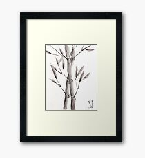 The Blessed Seeds Framed Print