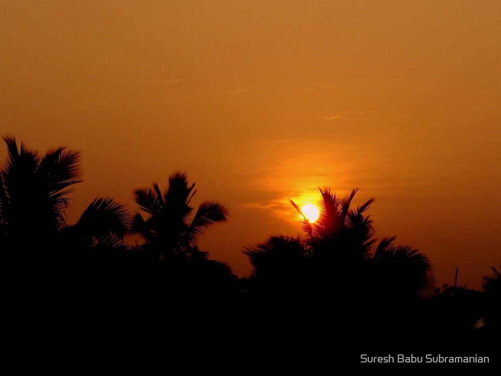 Sunrise by Suresh Babu Subramanian