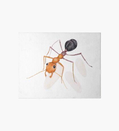 Ant Daycare Art Board Print