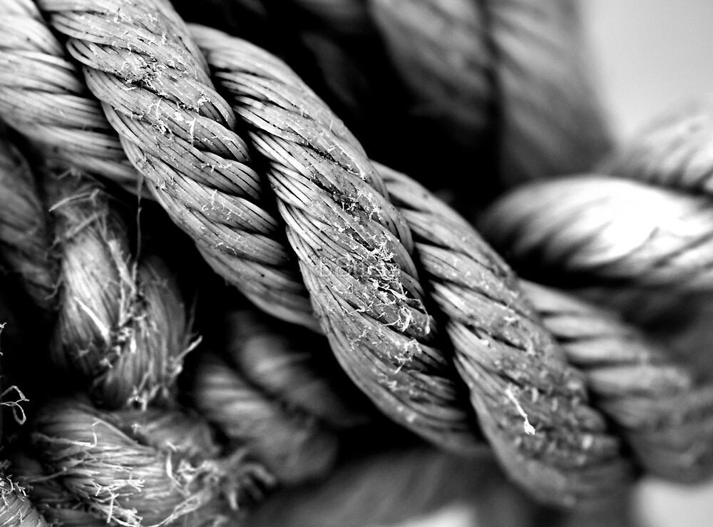 Rope by b8wsa