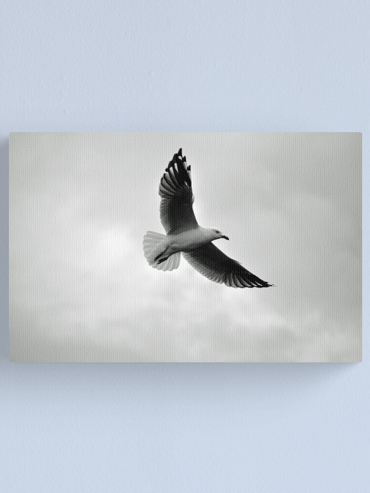 Alternate view of Soaring Canvas Print