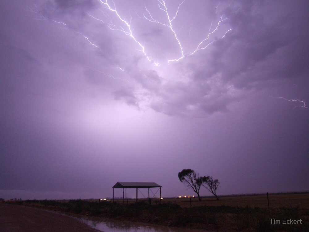 Shelter from the storm by Tim Eckert