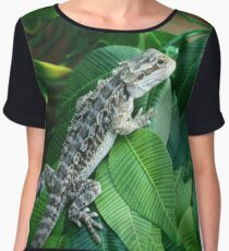 Bearded Dragon Women's Chiffon Top