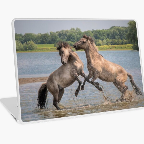 The Bachelor Party  Laptop Skin