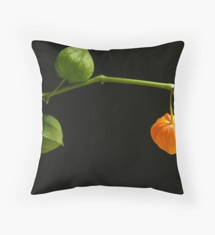 Let's Party.... Throw Pillow