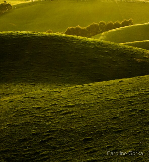 Green Folds by Caroline Gorka