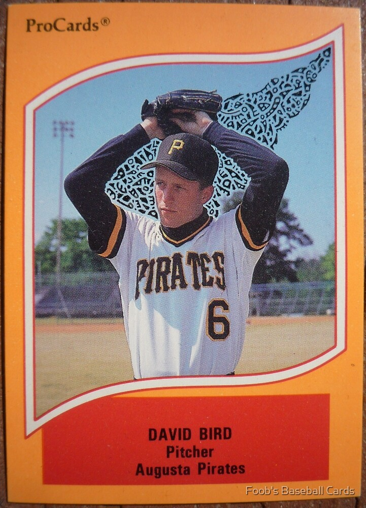 319 - David Bird by Foob's Baseball Cards