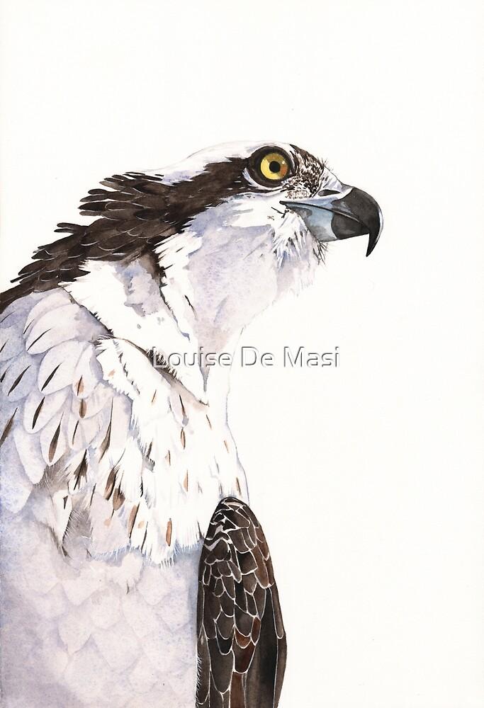 Osprey by Louise De Masi