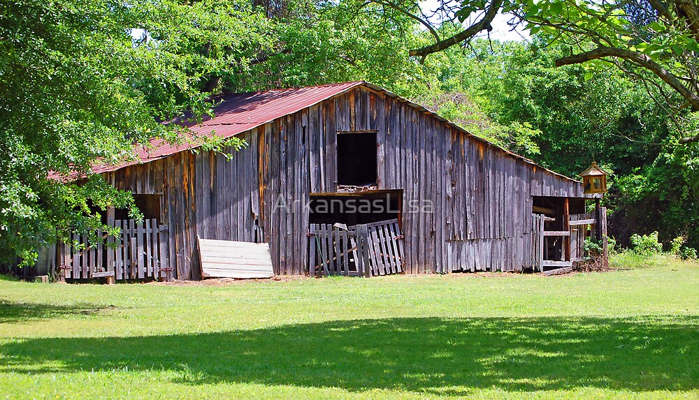 Through The Years by ArkansasLisa