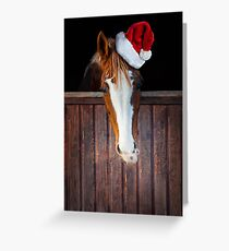 Horse with Santa hat Greeting Card