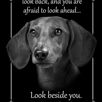 Best dog memorial, dachshund i'll always be with you by mydachshund