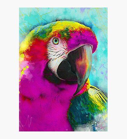 parrot ara art #ara #parrot #animals Photographic Print