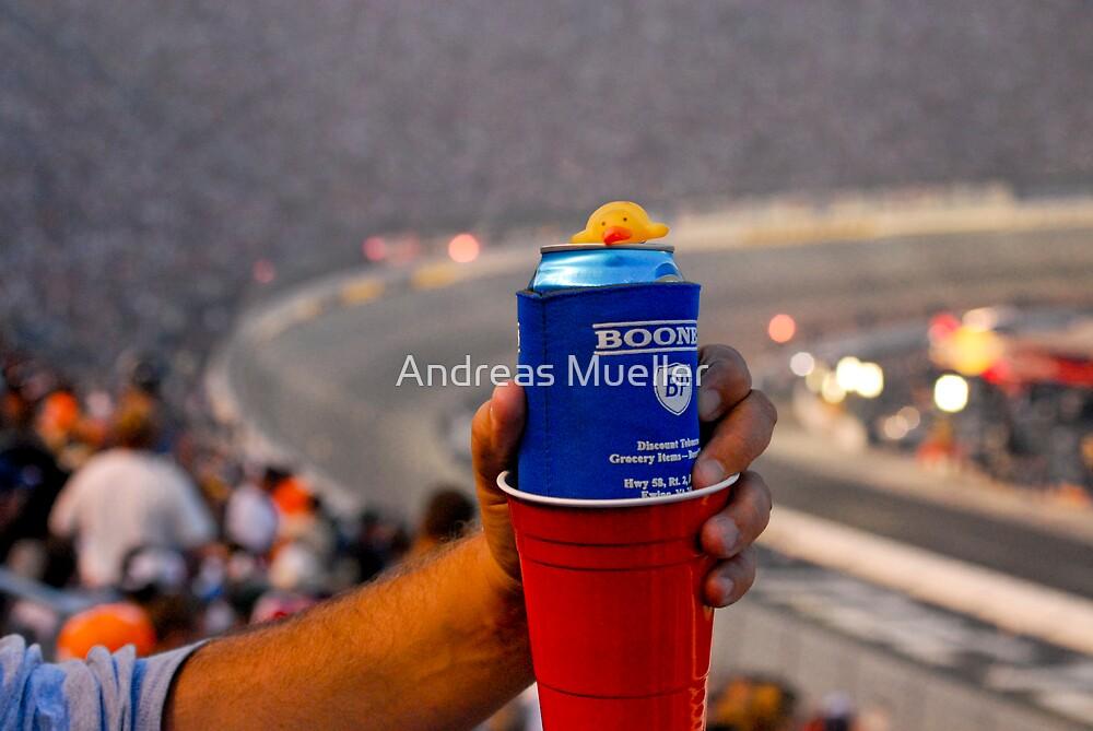 Ducks pestering NASCAR fans in Bristol by Andreas Mueller