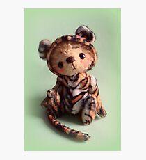 Teddy Bear Tiger 'Tigger' from Teddy Bear Orphans Photographic Print