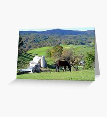 Bay on the Hill Greeting Card