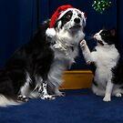 Christmas Kiss by digitaldawn