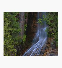 Summer Waterfall In North Cascades Photographic Print