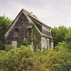 Abandoned Farmhouse by Tracy Friesen