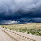 Lonely Colorado Road by DariaGrippo