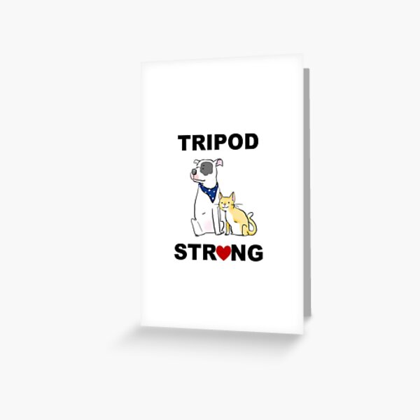 Tripod Strong Dog and Cat Greeting Card
