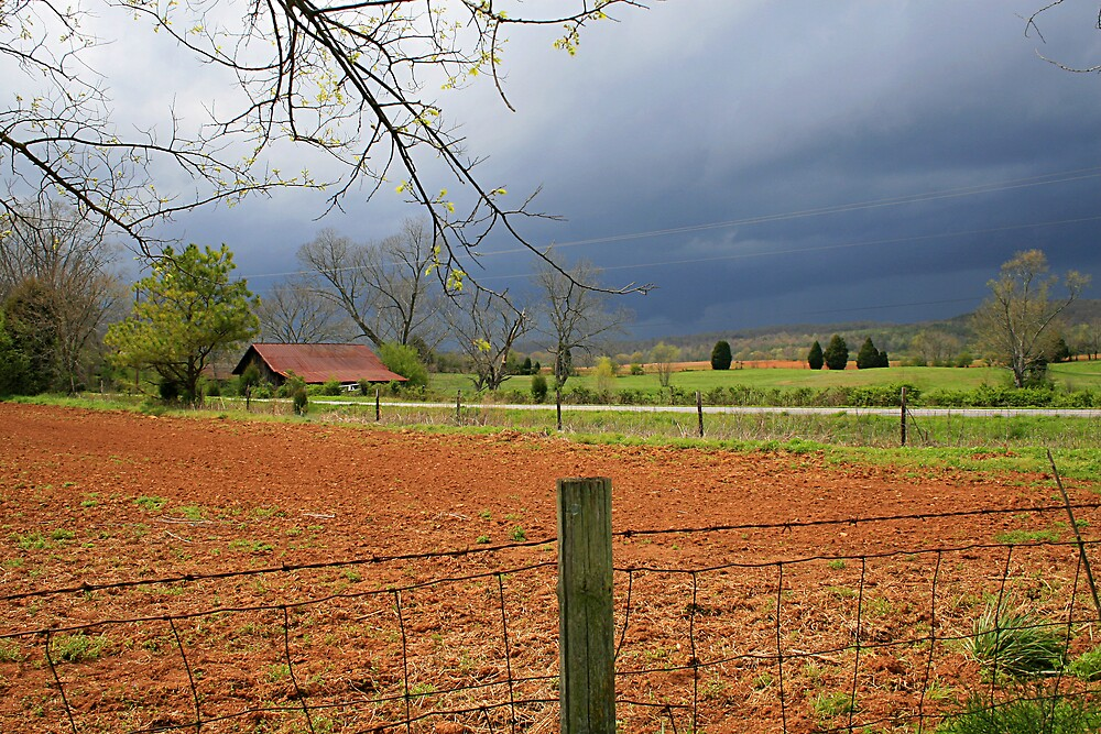 Storm Over the Farm by Patricia Montgomery