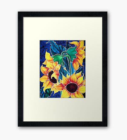 Sassy Sunflowers Framed Print