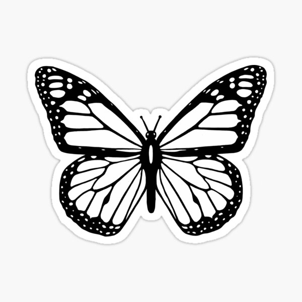 Black and white butterfly. Sticker