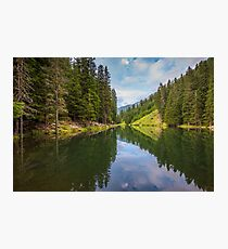 Alpine summer, Austria Photographic Print