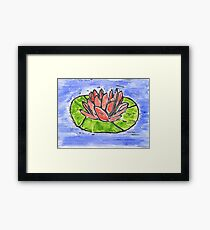 Red Water Lily Framed Print