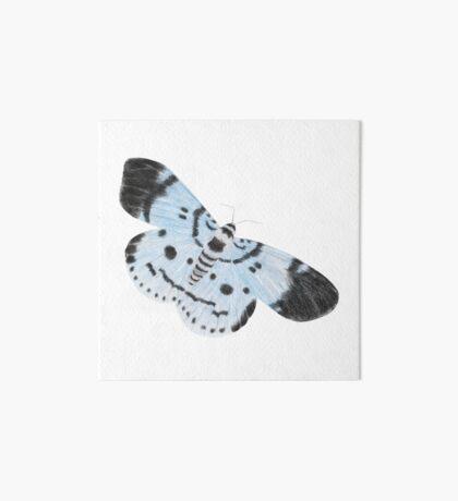 Blue Tiger Moth Art Board Print