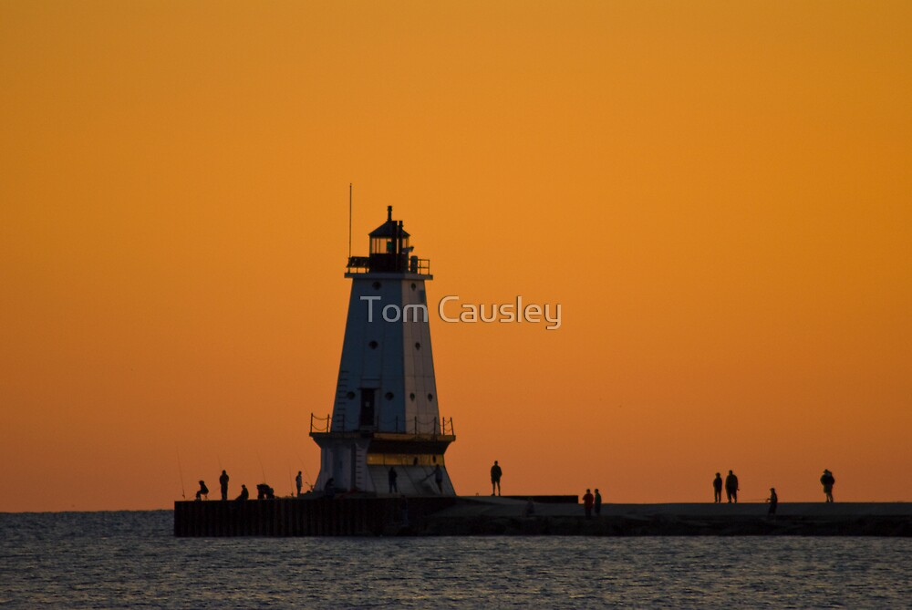 Ludington North Breakwater Light  by Tom Causley