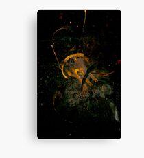 Transtract - 0058 - Nth Drift Take Two Canvas Print