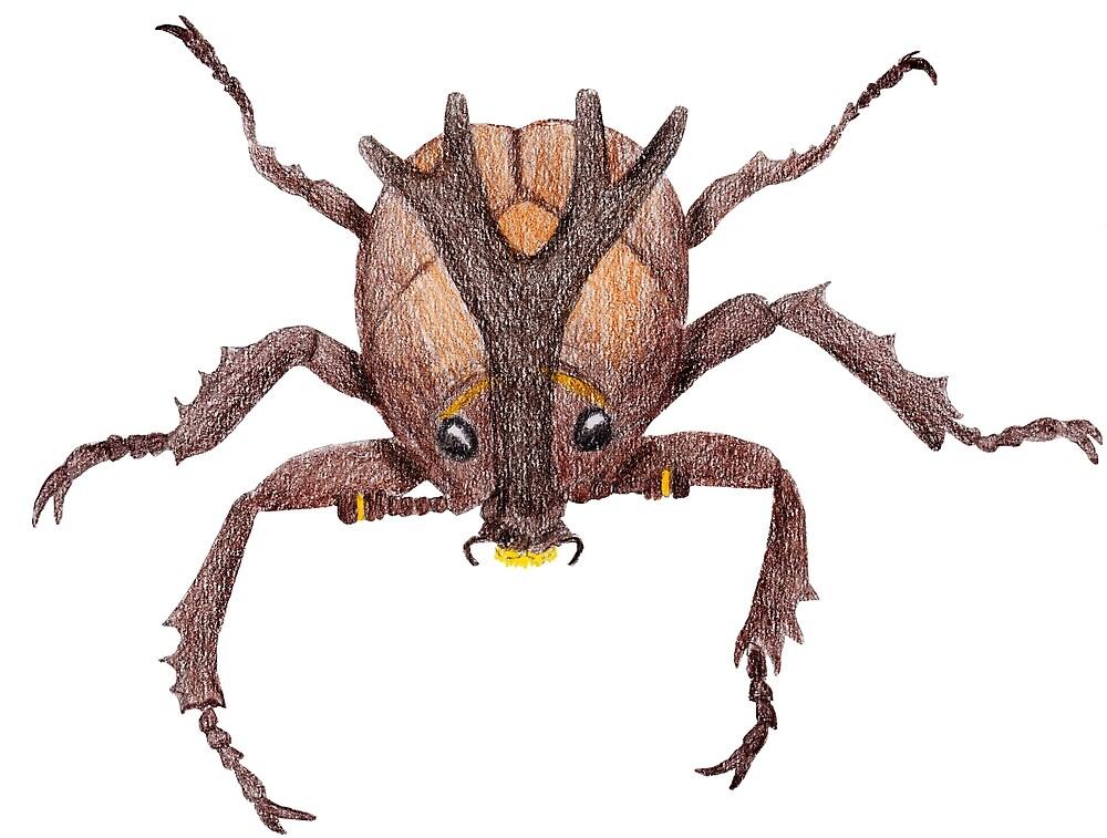 Japanese Rrhinoceros Beetle by Linda Ursin