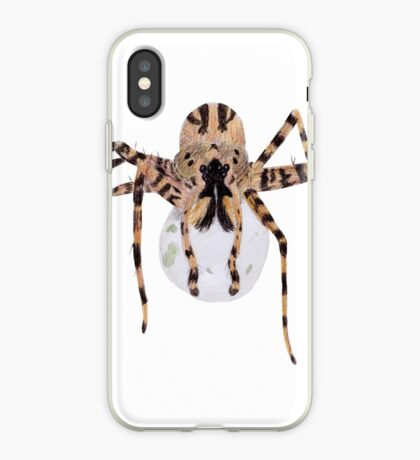 Spider with an Egg Sack iPhone Case