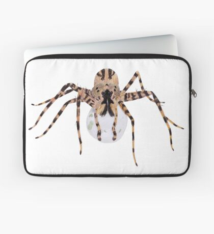 Spider with an Egg Sack Laptop Sleeve