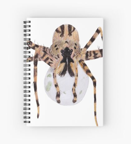 Spider with an Egg Sack Spiral Notebook