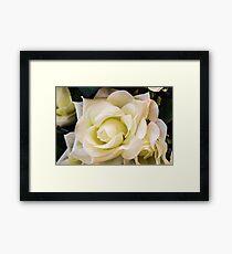 Beige Rose Framed Print